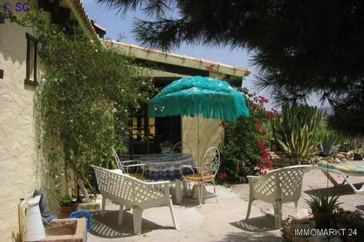 Finca mit Gästeappartement mitten im Weinanbaugebiet - Bild 1