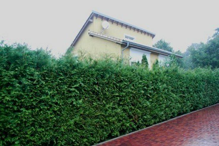 Bild 2: Anspruchsvolles, modernes Einfamilienhaus mit Doppelcarport und Geräteraum in Garrel!!!