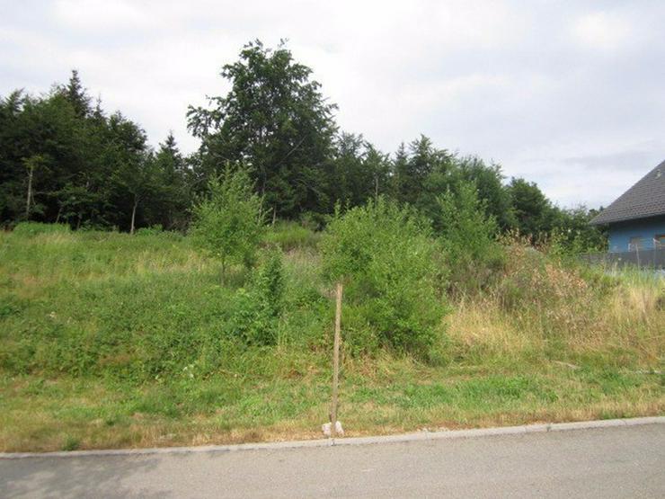 Bild 2: Triberg++Villenlage++Grundstück 715m² am Sonnenhang, trotzdem fast eben!++voll erschloß...