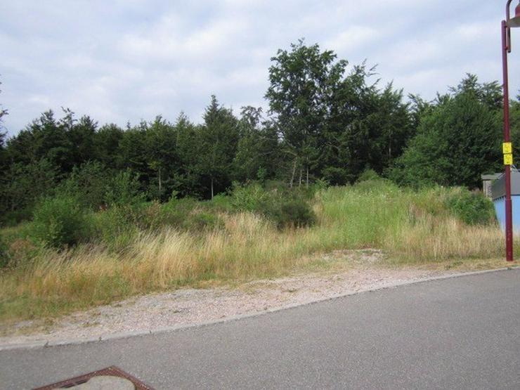 Triberg++Villenlage++Grundstück 715m² am Sonnenhang, trotzdem fast eben!++voll erschloß... - Grundstück kaufen - Bild 1