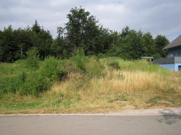 Bild 3: Triberg++Villenlage++Grundstück 715m² am Sonnenhang, trotzdem fast eben!++voll erschloß...