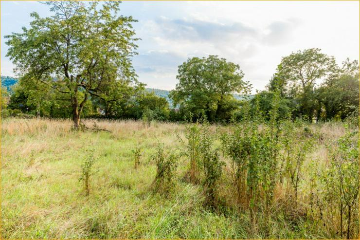 Bild 8: Baugrundstück in zentraler Lage von Plüderhausen