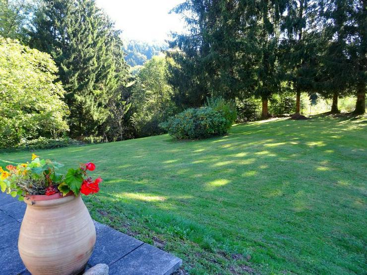Bild 3: Farm mit beheiztem Pool in den Vogesen - 100 km von Basel