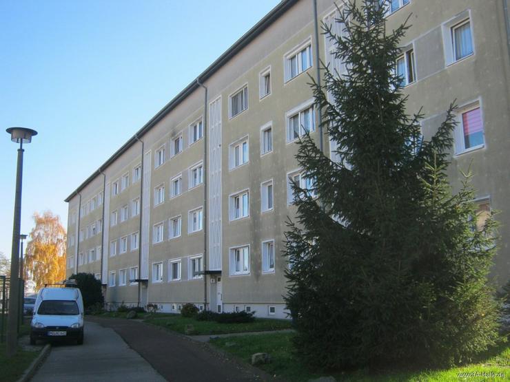 Solide Wohnung, solides Viertel! - Wohnung kaufen - Bild 1
