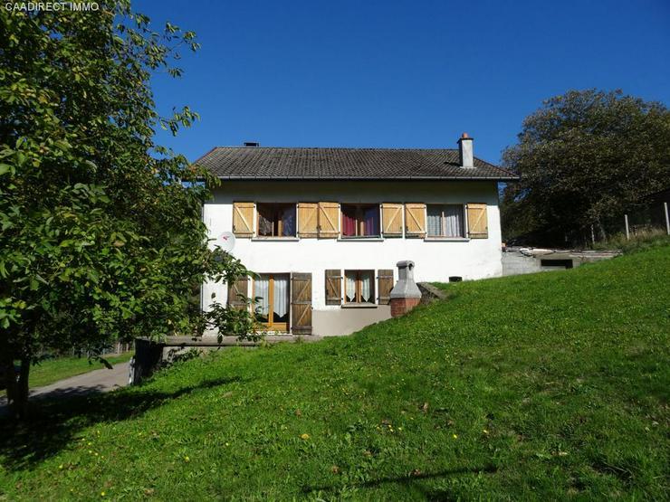 Bild 2: Farm mit 1800 m² Grundstück - 90 km von Basel
