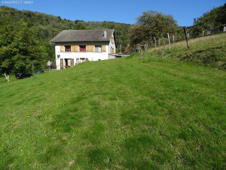 Bild 4: Farm mit 1800 m² Grundstück - 90 km von Basel