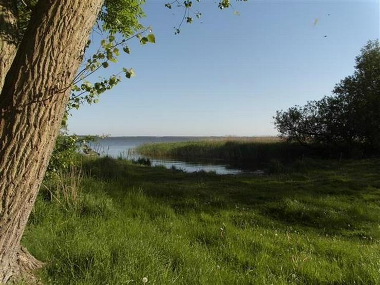 Bild 11: Selten aber wahr - Ufergrundstück auf Usedom am Achterwasser!