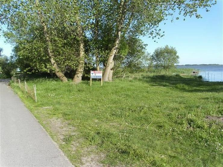Selten aber wahr - Ufergrundstück auf Usedom am Achterwasser! - Grundstück kaufen - Bild 1