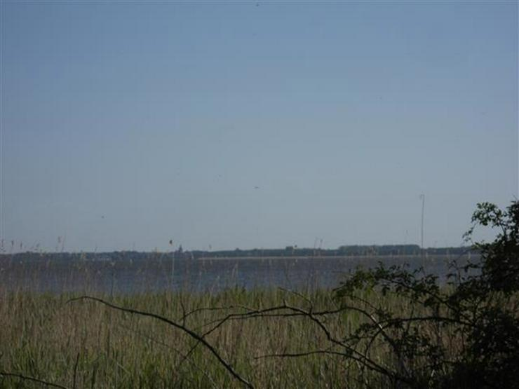 Bild 3: Selten aber wahr - Ufergrundstück auf Usedom am Achterwasser!