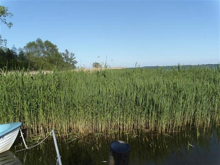 Bild 12: Selten aber wahr - Ufergrundstück auf Usedom am Achterwasser!