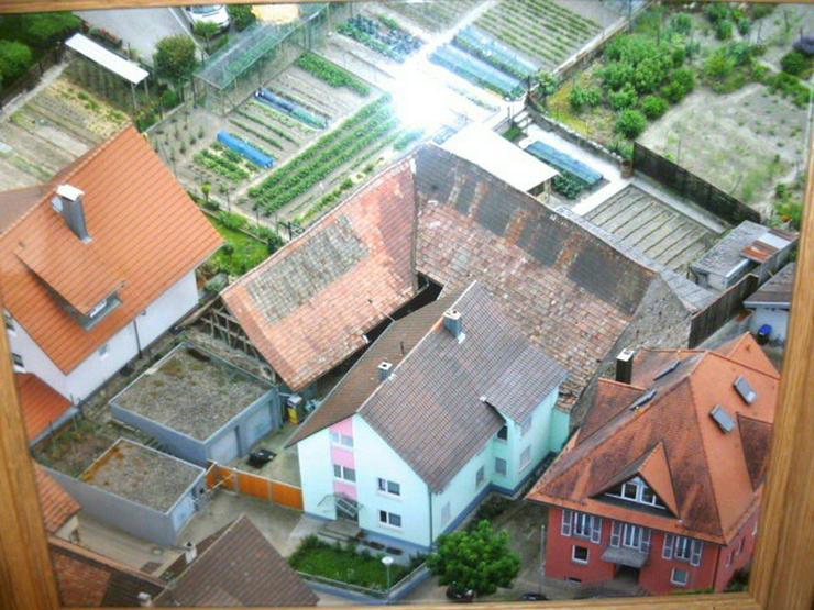 1000 qm Grundstück: 1-2 Parteienhaus und große Scheune (Ausbaureserve) in Vogtsburg im ...