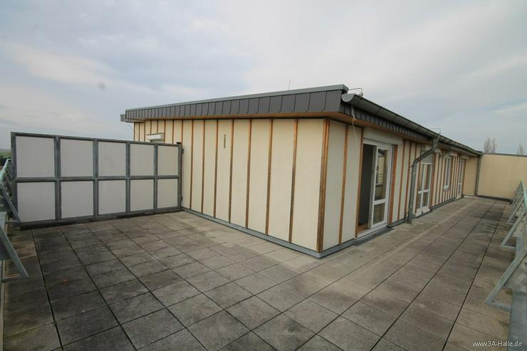 Bild 6: Imposante Dachterrasse mit 2 Raumwohnung!