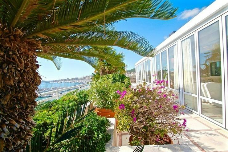 Bild 5: Exzellentes Luxus-Penthouse in Palma de Mallorca