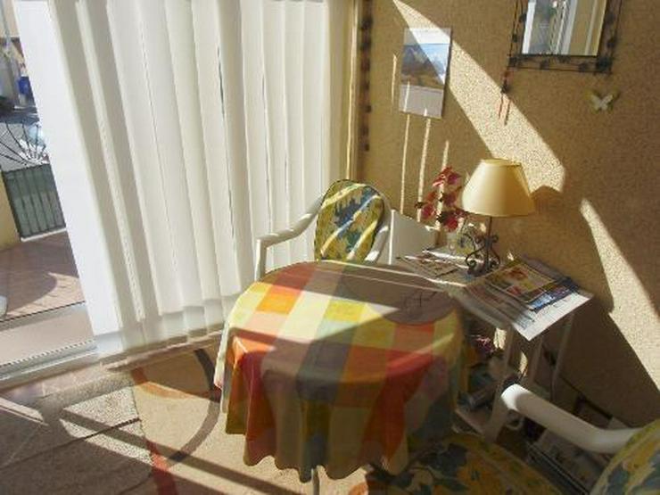 Bild 3: Torrevieja: Reihenhaus mit Gemeinschaftspool und nur 3 Km vom Meer