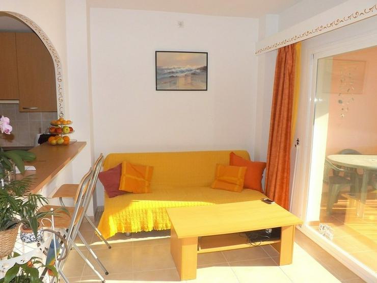 Bild 3: Schönes Appartement mit Pool, Sa Torre