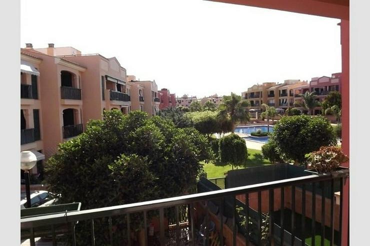 Bild 4: Schönes Appartement mit Pool, Sa Torre