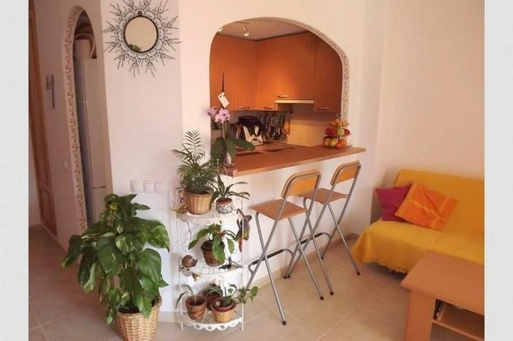 Bild 2: Schönes Appartement mit Pool, Sa Torre