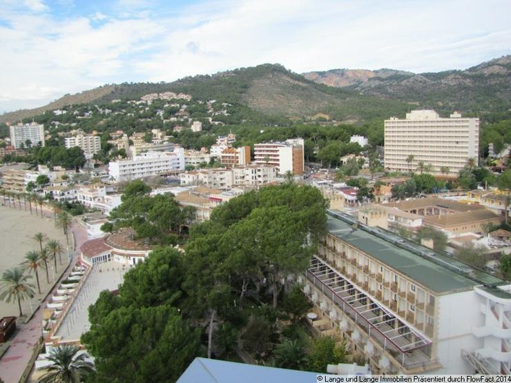 Bild 4: Mallorca - Paguera - Apartment mit Meerblick und Strandzugang - Spanien Immobilien