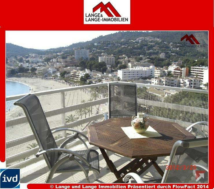 Mallorca - Paguera - Apartment mit Meerblick und Strandzugang - Spanien Immobilien