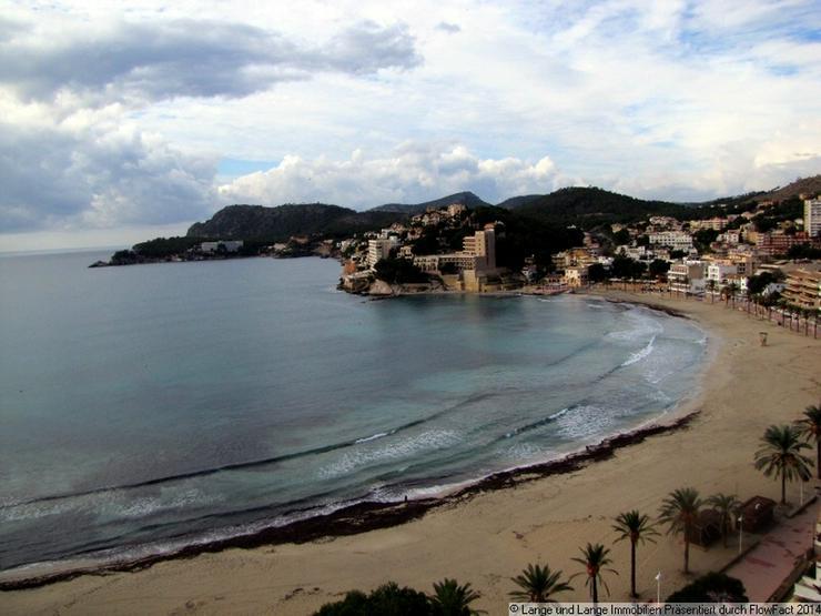 Bild 2: Mallorca - Paguera - Apartment mit Meerblick und Strandzugang - Spanien Immobilien