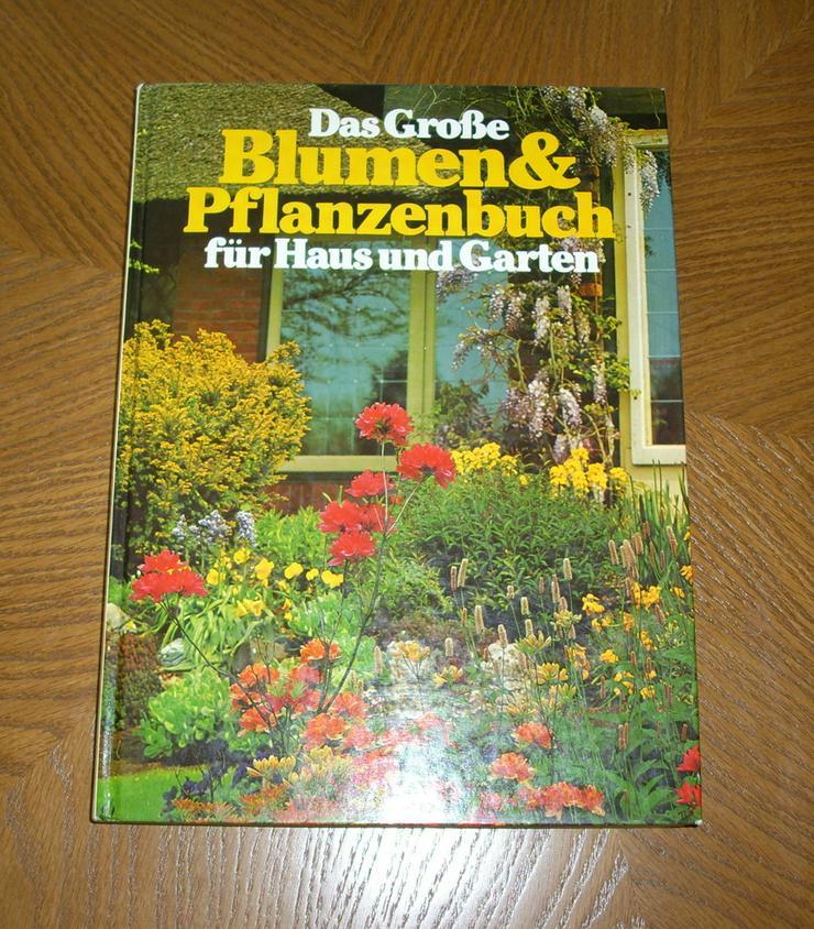 Das große Blumen & Pflanzenbuch