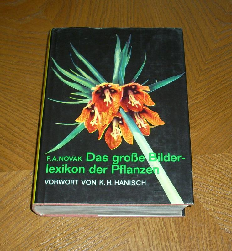 Das große Bilderlexikon der Pflanzen