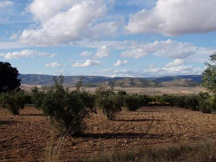 Bild 4: Grundstück in wunderschöner Umgebung bei Biar