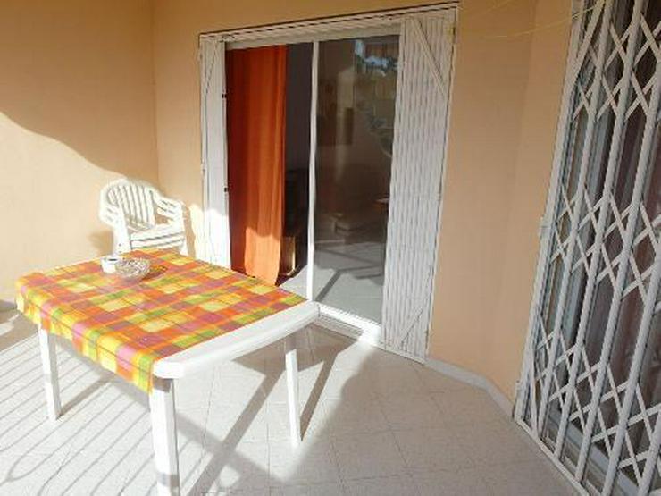 Bild 5: Gepflegtes Appartement in Anlage mit direktem Strandzugang