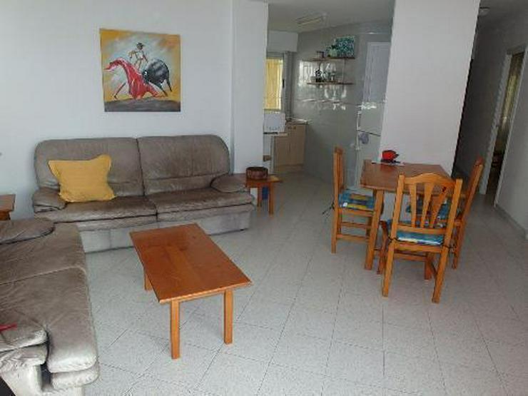 Bild 3: Gepflegtes Appartement in Anlage mit direktem Strandzugang