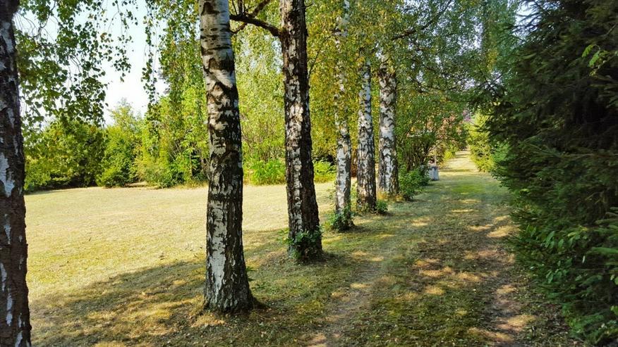 Bild 3: Schmuckstück im Grünen - Besonderes Gartengrundstück mit Hütte und Brunnen in Warmbron...