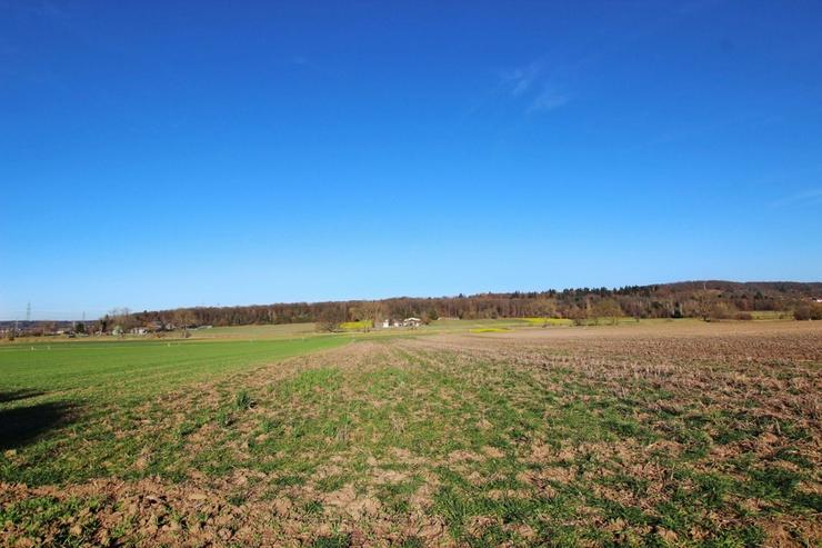 Bild 5: Schmuckstück im Grünen - Besonderes Gartengrundstück mit Hütte und Brunnen in Warmbron...