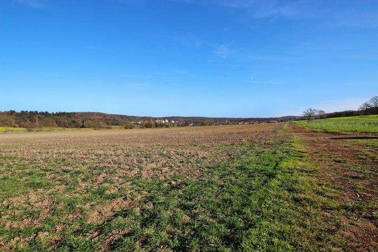 Bild 6: Schmuckstück im Grünen - Besonderes Gartengrundstück mit Hütte und Brunnen in Warmbron...