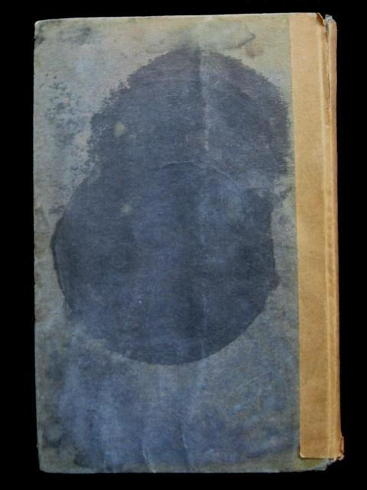 Bild 4: George Taylor - Klytia (von 1909)