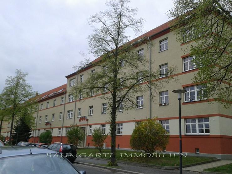 KAPITALANLAGE in Dresden-Tolkewitz in ruhiger Lage im Erdgeschoss eine gut vermietete Wohn...