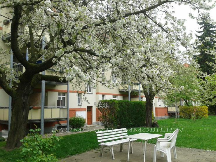 Bild 2: KAPITALANLAGE in Dresden-Tolkewitz in ruhiger Lage im Erdgeschoss eine gut vermietete Wohn...