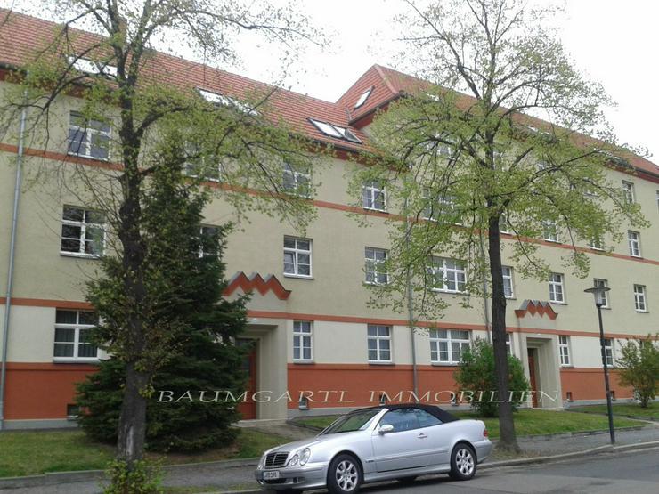 Bild 3: KAPITALANLAGE in Dresden-Tolkewitz in ruhiger Lage im Erdgeschoss eine gut vermietete Wohn...