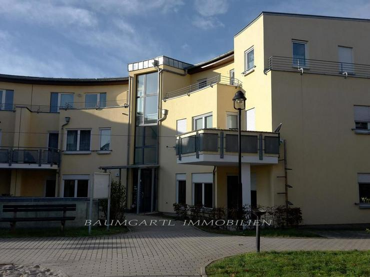KAPITALANLAGE - Martinshöhe in Wiederitzsch - kleine gemütiche 2 Zimmerwohnung im Erdges... - Haus kaufen - Bild 1
