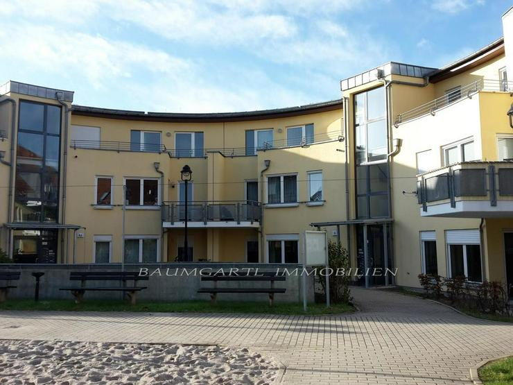 KAPITALANLAGE - Martinshöhe in Wiederitzsch - 2 Zimmerwohnung im Erdgeschoss mit Terrasse - Haus kaufen - Bild 1
