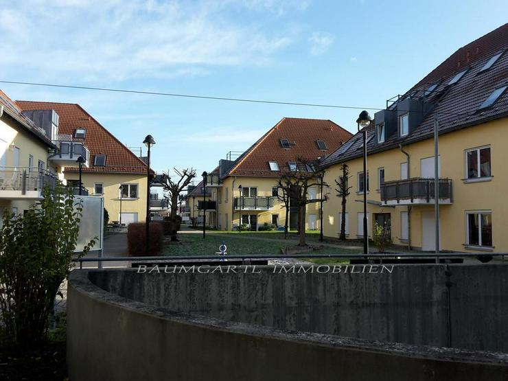 Bild 3: KAPITALANLAGE - Martinshöhe in Wiederitzsch - 2 Zimmerwohnung im Erdgeschoss mit Terrasse