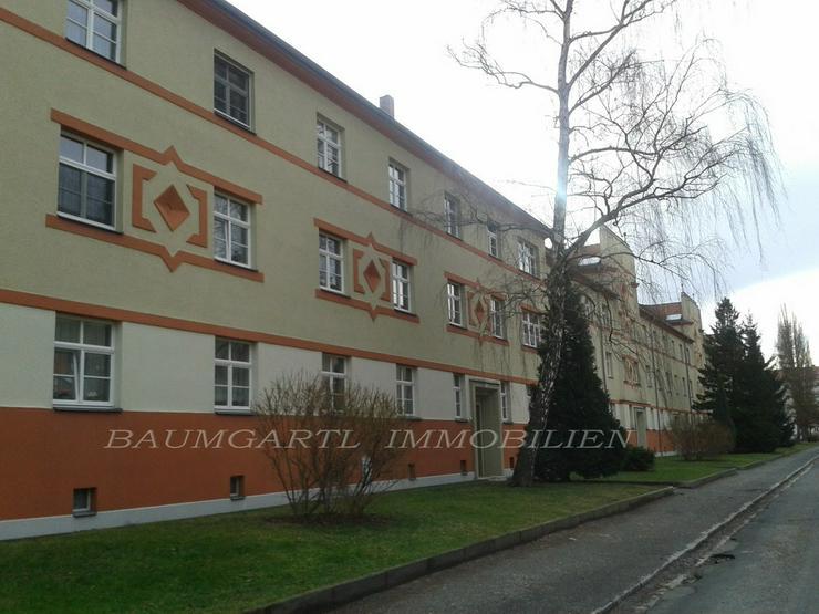 KAPITALANLAGE in Dresden-Tolkewitz in ruhiger Lage eine 2 Raumwohnung mit Balkon - Bild 1