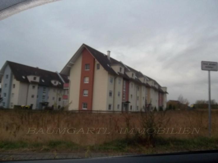 KAPITALANLAGE - schmucke 3 Zimmerwohnung mit Balkon in ruhiger Lage von Ermlitz - Wohnung kaufen - Bild 1