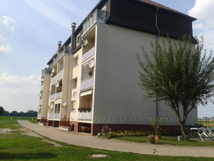 Bild 2: KAPITALANLAGE - 3 Zimmerwohnung im Grünen von Zörbig gelegen zu verkaufen