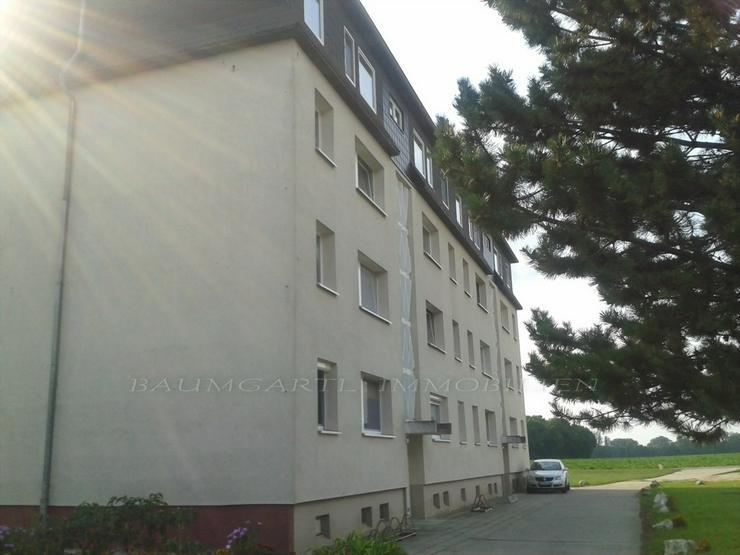 Bild 3: KAPITALANLAGE - 3 Zimmerwohnung im Grünen von Zörbig gelegen zu verkaufen