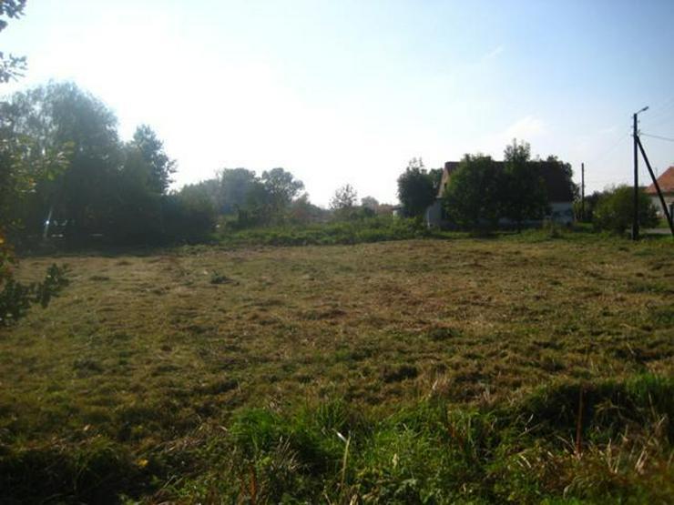 Grundstück in Wilczkow bei Breslau zu verkaufen