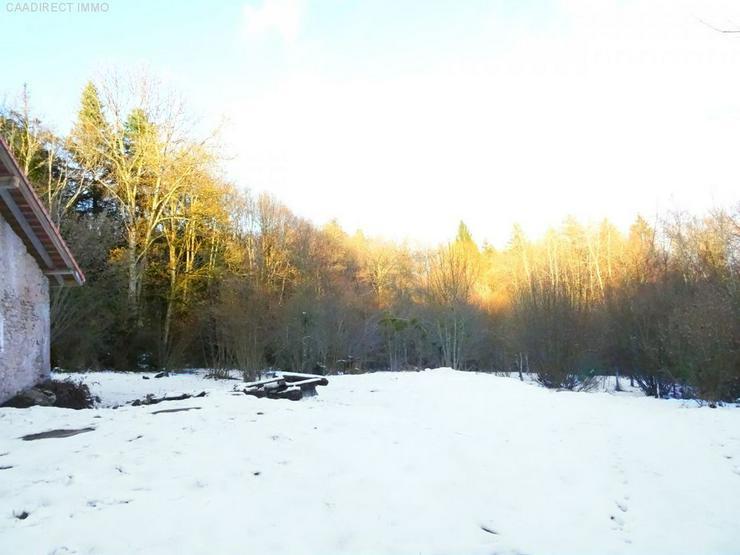 Bild 2: Kernsanierungsbedürftige Farm mit 1,3 ht Grundstück - 100 km von Basel