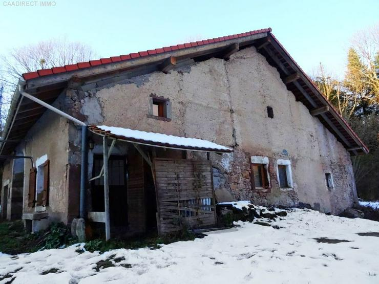 Bild 3: Kernsanierungsbedürftige Farm mit 1,3 ht Grundstück - 100 km von Basel