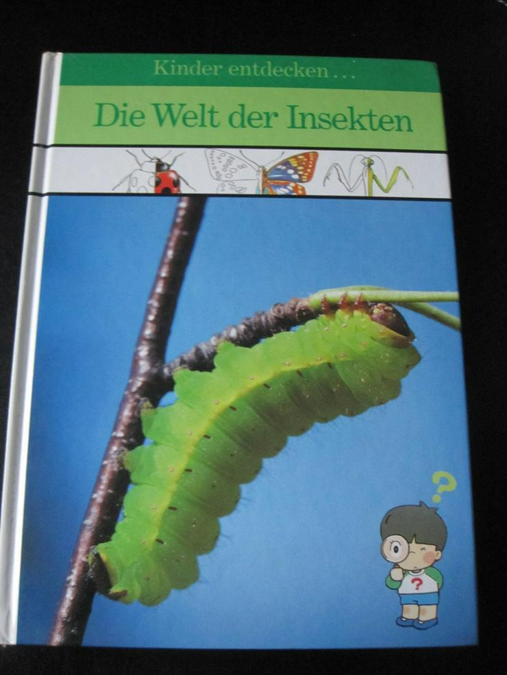Kinder entdecken?. die Welt der Insekten