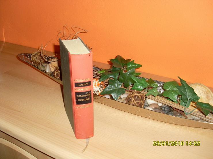 Geliebt, Gejagt und Unvergessen Romanbuch