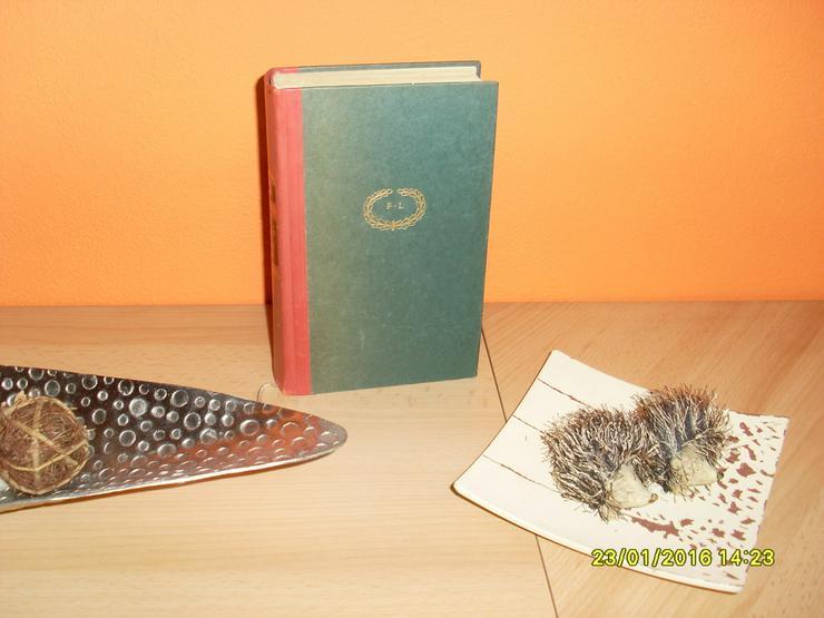 Bild 3: Geliebt, Gejagt und Unvergessen Romanbuch
