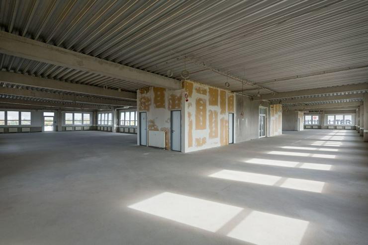 Bild 2: BÜROABTEILUNG ZUM AUSBAU MIT DACHTERRASSE AB 4,95 EUR/m²